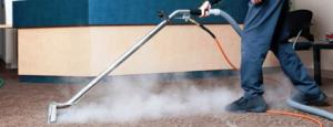 steam cleaner carpet